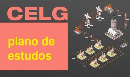 CELG – Plano de estudos (Analista de Gestão: Administrador)
