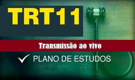 TRT 11 – Plano de estudos (Analista Judiciário – Área Administrativa)